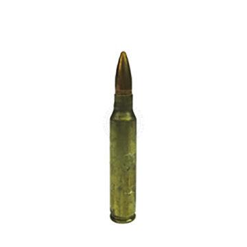 5.56mm Round - Dummy Training Ammunition