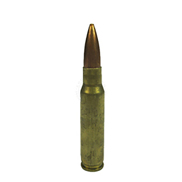 .308 Cal / 7.62mm Round - Dummy Training Ammunition