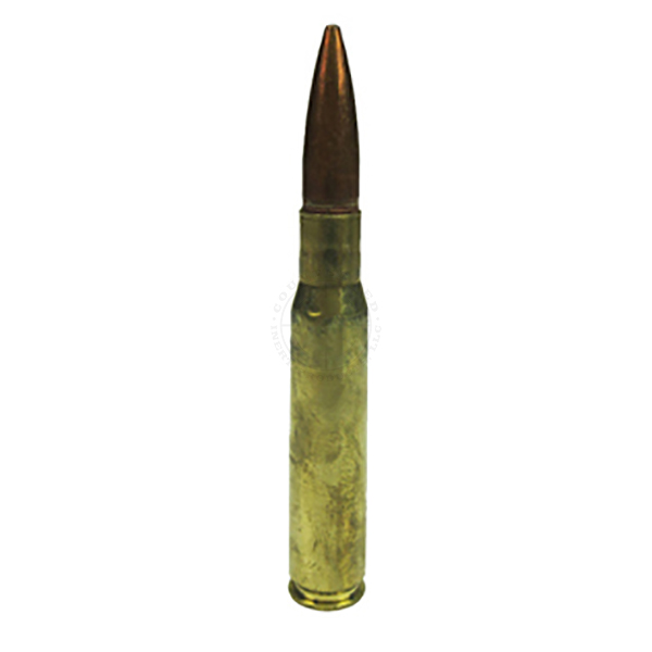 .50 Cal Round - Dummy Training Ammunition