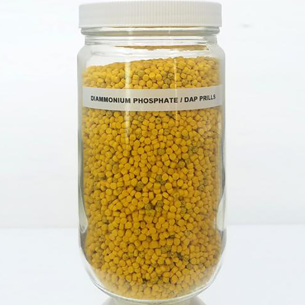 Diammonium Phosphate (DAP) Prills, Large Sample - Inert Training Aid