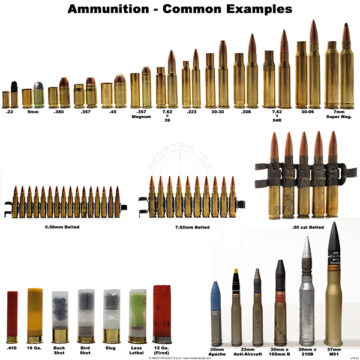 Ammunition Examples Poster