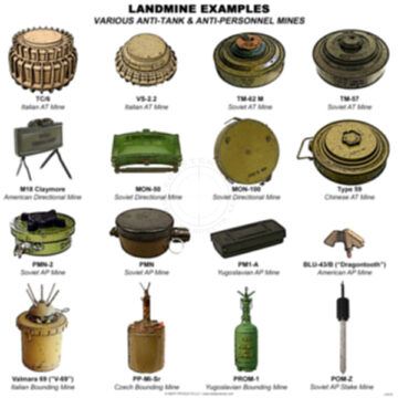 Landmines Examples Training Poster